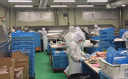Investing in Food Processing Plants in Taiwan and China to Support Japanese Foodservice Companies Running Businesses Overseas